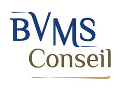 Etude 3 logo BVM Conseil
