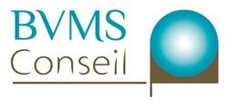 Etude 2 logo BVM Conseil