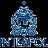 Interpol_700x700.png