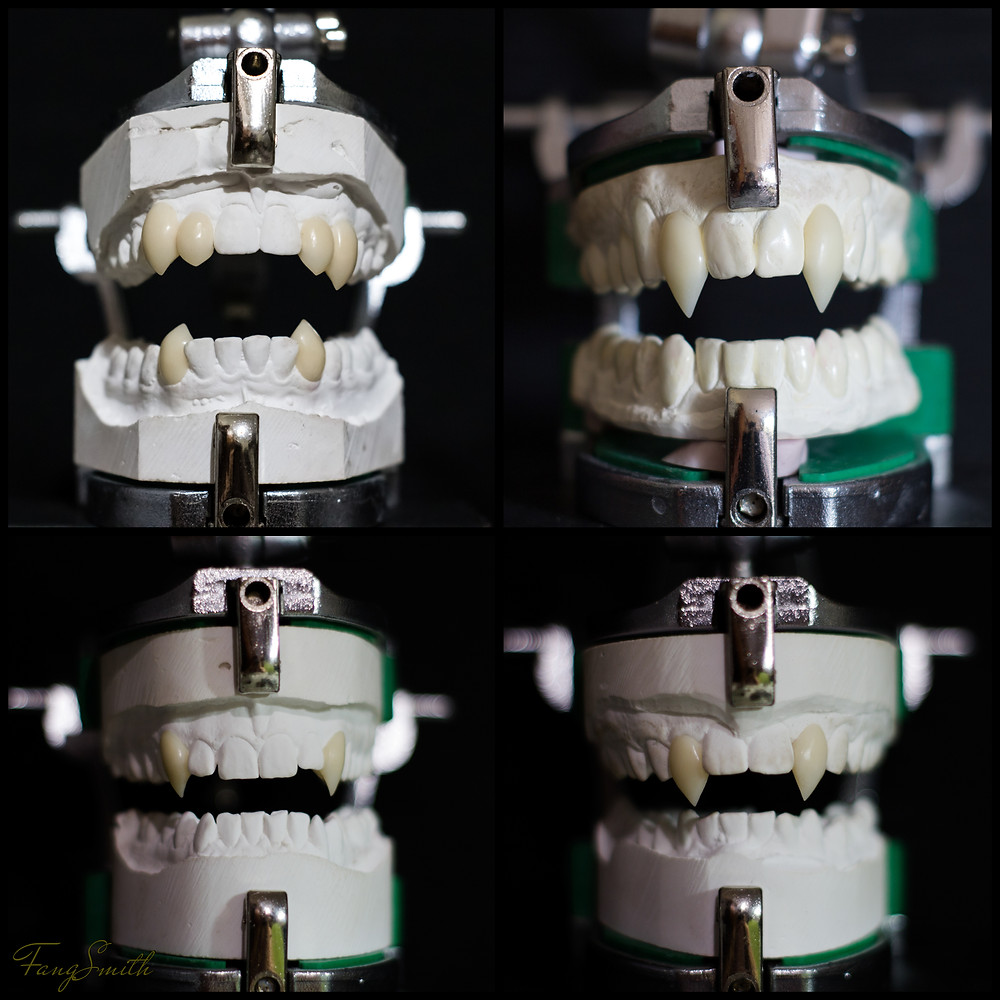 Showing four sets of custom made fangs by FangSmith Australia.