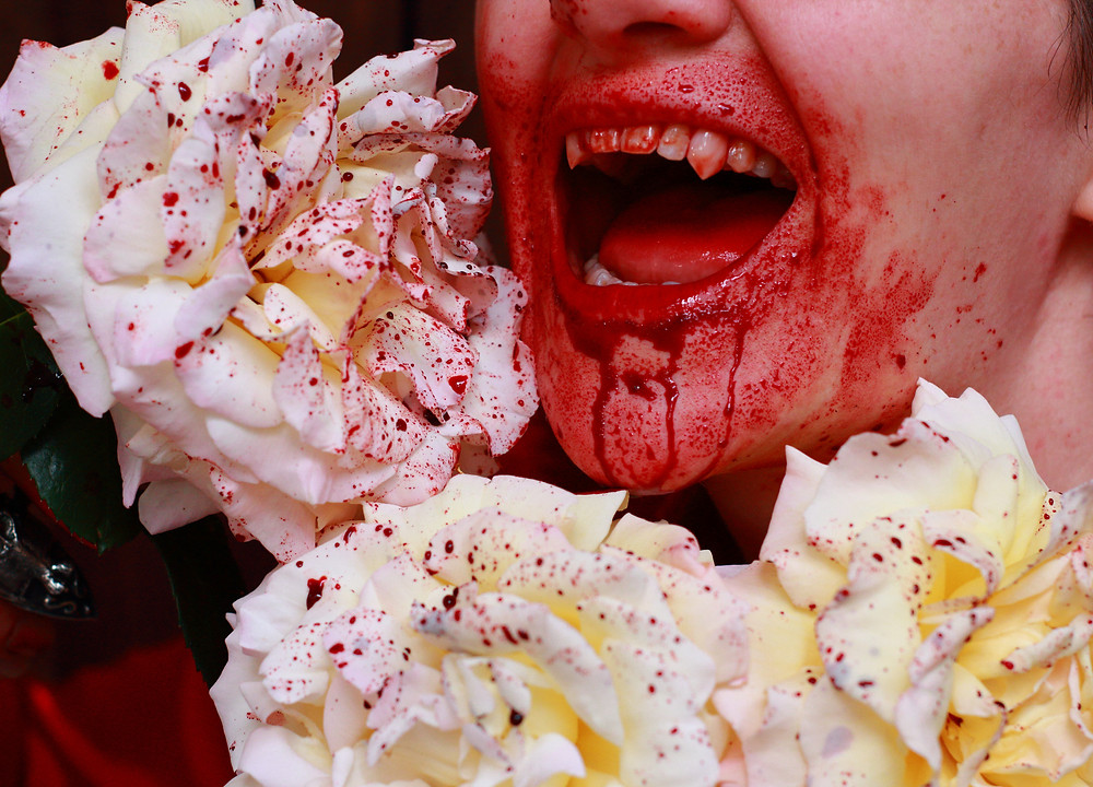 A vampire among blood spattered roses. We made a mess.