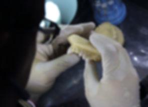 Dental labratory for custom made fangs