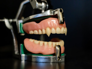 Dentures with Fangs