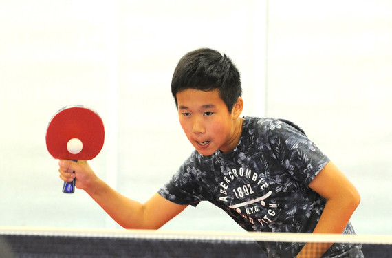 Podvin Table Tennis Gallery