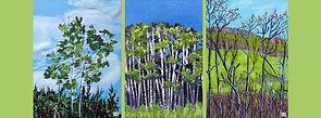 Trio of trees FB header copy.jpg