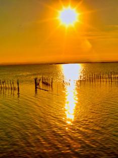 La Albufera, is a freshwater lagoon and estuary on the Gulf of Valencia.