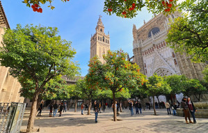 "Giralda captured from the orange garden. It is the symbol of Seville. The statue on its top, called ""El Giraldillo"", was installed in 1568 to represent the triumph of the Christian faith."