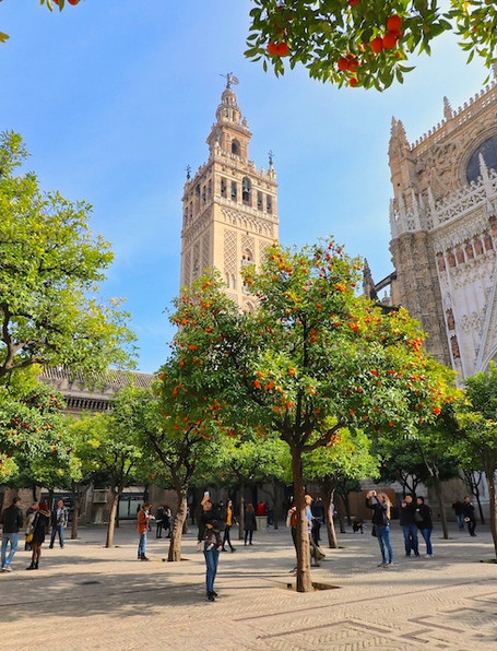 """Giralda captured from the orange garden. It is the symbol of Seville. The statue on its top, called """"El Giraldillo"""", was installed in 1568 to represent the triumph of the Christian faith."""