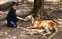 australia_2010-5.jpg
