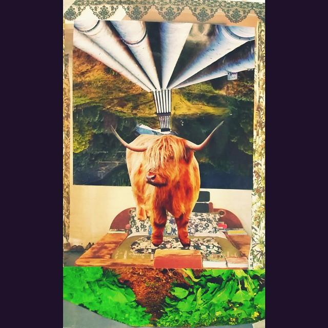Hipster Abâtoire #tarraleah #tasmanianlifemagazine #tasmania #angariankitchen #spaces #frankiemagazi