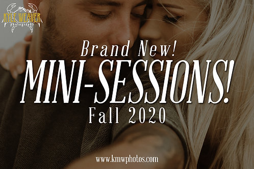 Mini Sessions - November 7, 2020 - 2:00pmTS