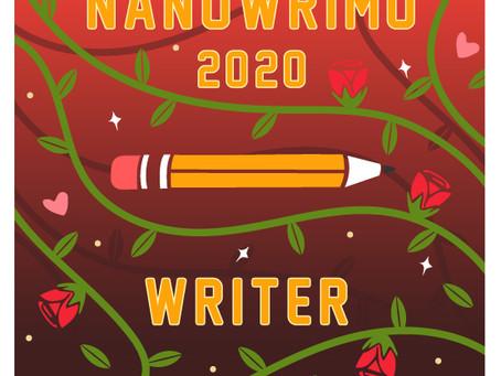 November is NaNoWriMo!