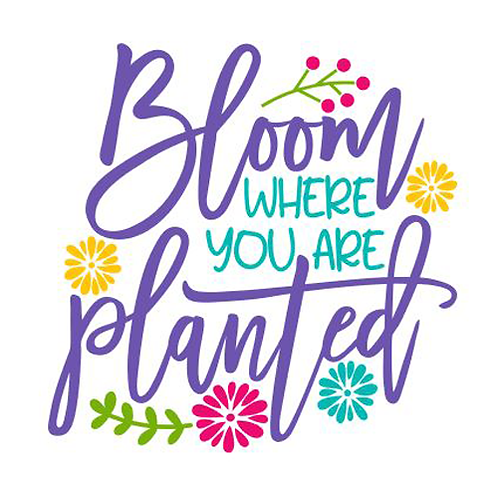 "Bloom where you are Planted (12""x12"")"