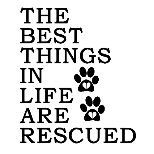"""Best Things in Life are Rescued (12""""x12"""")"""