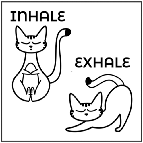 "Inhale Exhale Yoga Cats (12""x12"")"
