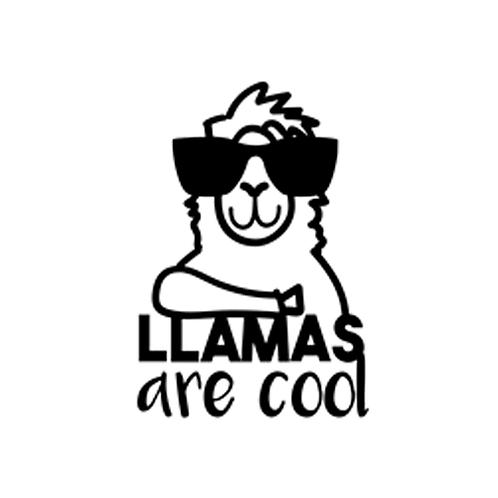"""Llamas are cool (12""""x12"""")"""
