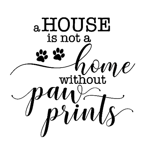 "House not Home without Paws  (12""x12"")"