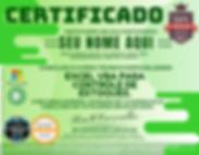 Certificado_Logísticos_GCDV_(3).png