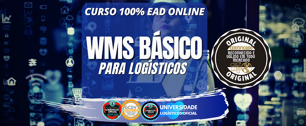wms basico.png