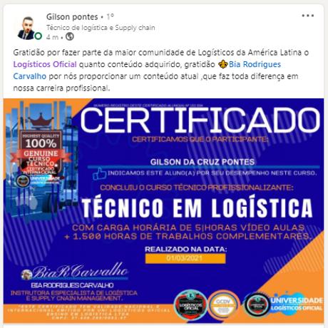 Técnico em logística - Gilson pontes (1).png