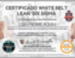 Certificado_Logísticos_GCDV_(7).png