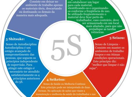 Os cinco Sensos 5S e a relação com a Logística