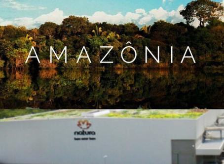 NATURA QUER ZERAR O DESMATAMENTO NA AMAZÔNIA COM LOGÍSTICA
