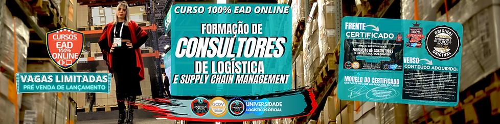 banner consultores de logistica.png
