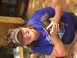 terrie and black piglet