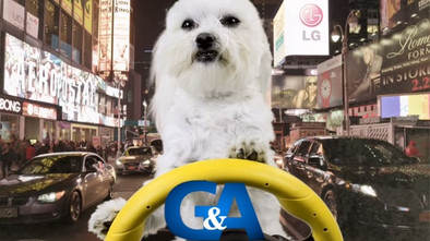 Grimaldi & Associates needed a whimsical commercial - they got it and they got results!