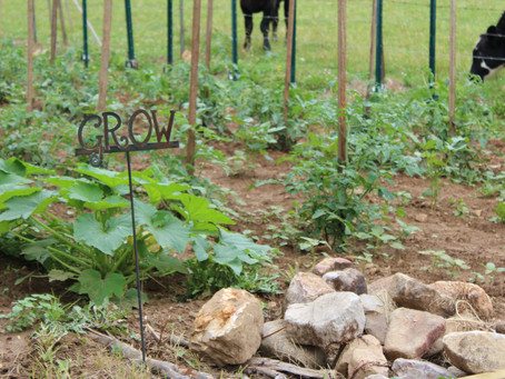 Media Alert: Carter County Community Gathers to Raise Gardens at the Drop Farm - You are Invited!