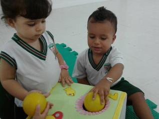 Livro sensorial, psicomotricidade e cores no Infantil