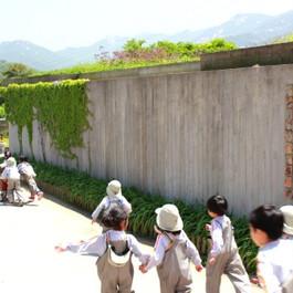 졸업생의 벽