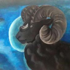 Black Ram