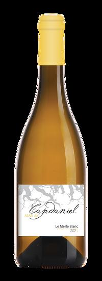 le-merle-blanc-20-04-2021.png