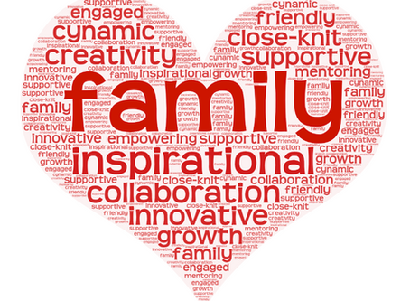 Who We Are and What We Strive for: A Professional Family of Diversity