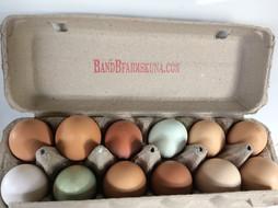 Eggs available now $3 a dozen
