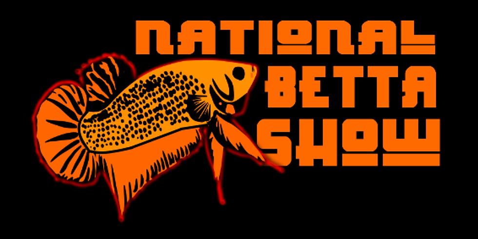 National Betta Show 2019
