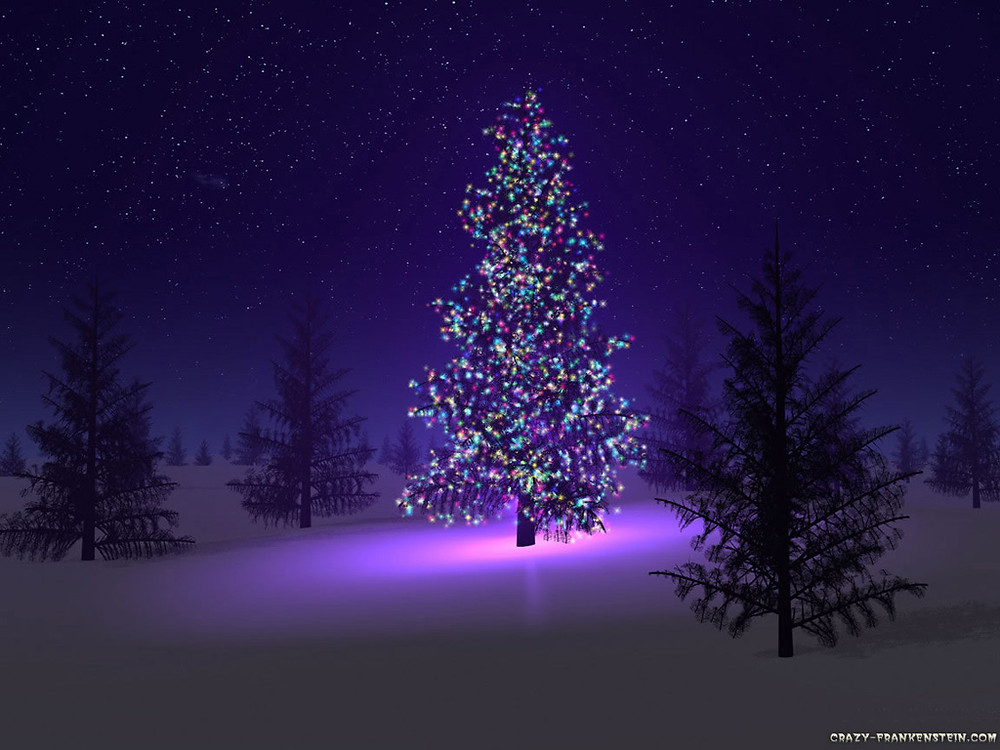 beautiful-christmas-tree.jpg