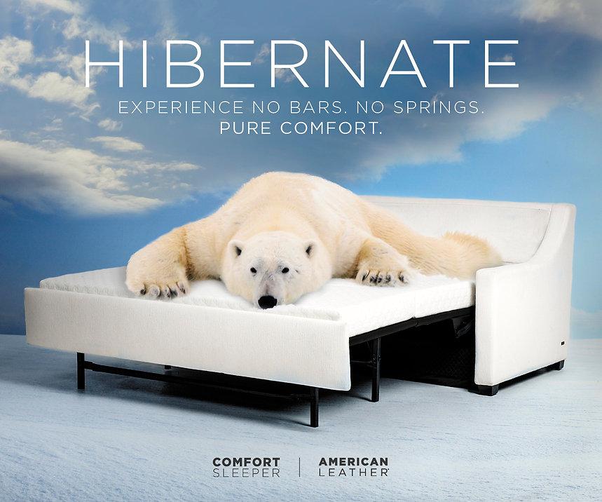 300x250_Hibernate.jpg
