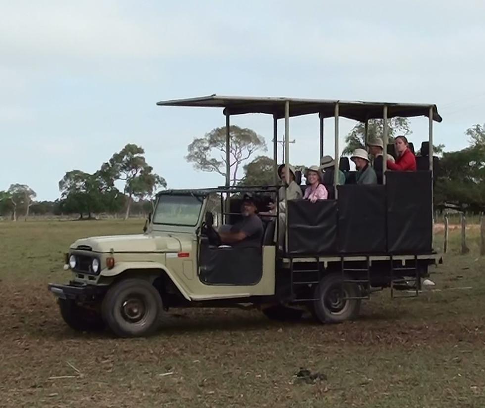 carro safari (2).jpg
