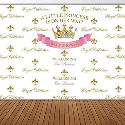 A Little Princess IsOn Her Way Backdrop