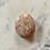 Thumbnail: Polished Sunstone