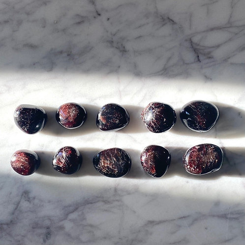 Polished Garnet (10 pieces)