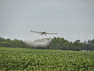 Dos sentencias recientes en materia de agroquímicos, prevención e información ambiental