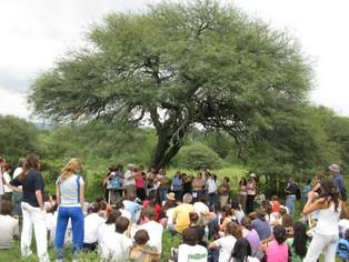Ley de bosques y participación en Córdoba: la resolución del amparo presentado por una comunidad ind