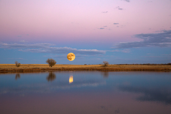 Super moon 4O4A0824Rcolor2016.jpg