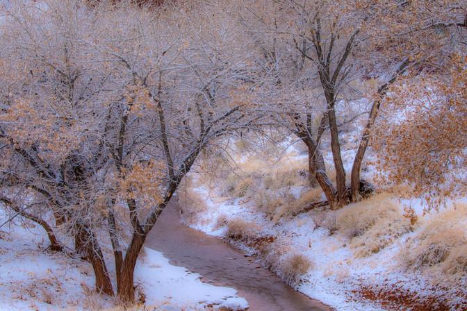 Winter Solace Utah 1-15-19 0Y3A4425Rcolo