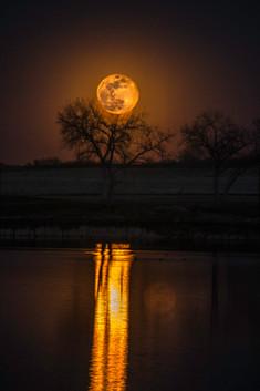 Full Moon Rising 4-19-19 0Y3A7805Rcolor.