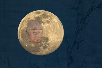 La Bella Luna web 4-6-20 9127Rcolor.jpg